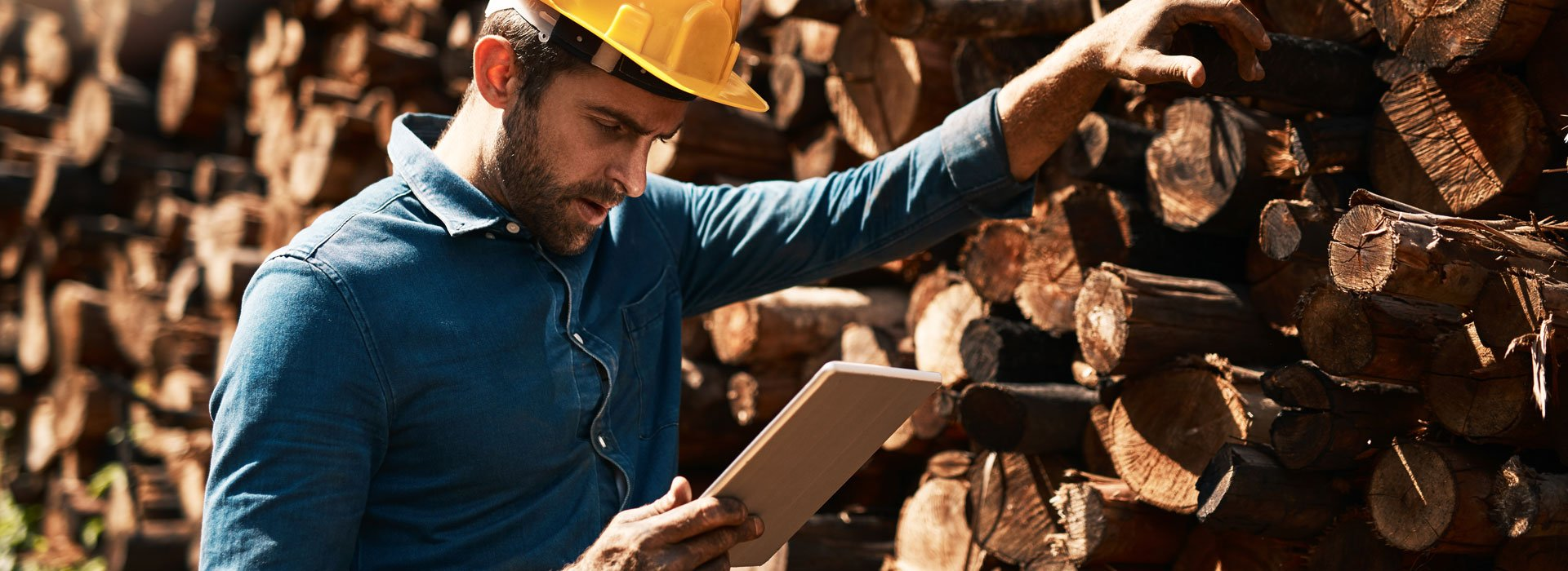 Logging Industry Software Solutions