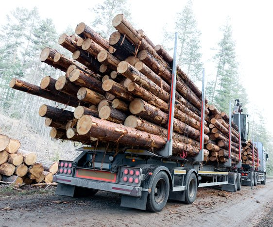 Forestry Industry Equipment